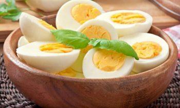 Conheça os benefícios da dieta do ovo, uma ótima opção para emagrecer com saúde