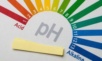 Bebidas e alimentos podem modificar o pH corporal?