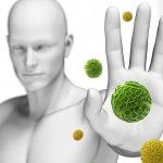 Sistema Imunológico: nossa defesa natural contra doenças