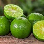 Limão: poderoso bactericida e antibiótico natural