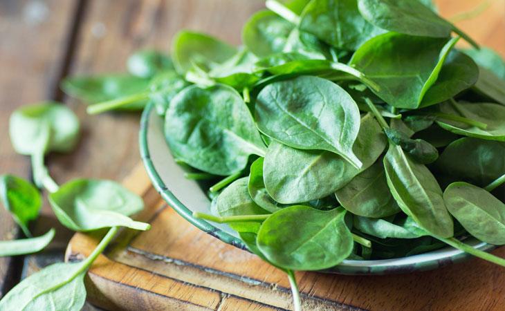 Espinafre: a força da natureza concentrada numa folha