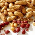 Amendoim, o viagra da natureza é também rico em nutrientes essenciais