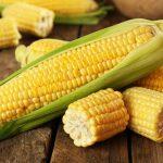 Milho: receitas, nutrientes e benefícios para saúde