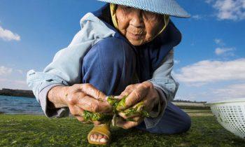 Porque algumas pessoas vivem tantos anos? Existe um segredo para a longevidade?