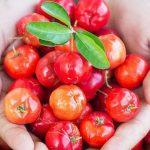 Acerola: conheça os benefícios de uma das frutas mais ricas em vitamina C