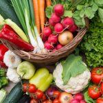 Dieta vegetariana: riscos e benefícios que devem ser avaliados para se adotar