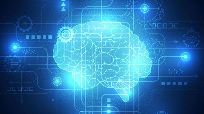 Cérebro, o supercomputador que controla todos os órgãos e funções do nosso corpo