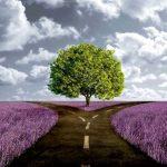 Causa e Efeito, entenda como a Lei do Karma age na sua vida