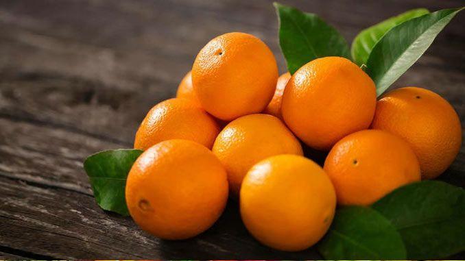 Laranja: fruta cítrica com muitos benefícios para a saúde