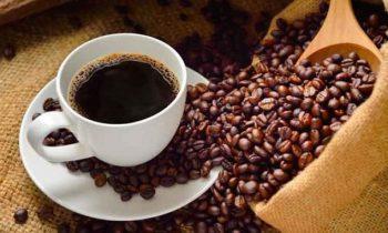 Café: bebida que conquistou o mundo e com muitos benefícios para a saúde