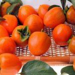 Caqui: fruta rica em benefícios e nutrientes com alto valor calórico