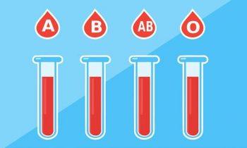 Tipos sanguíneos: saiba quais são e como eles se formam durante a gestação