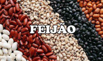 Feijão: benefícios, nutrientes e tipos do grão