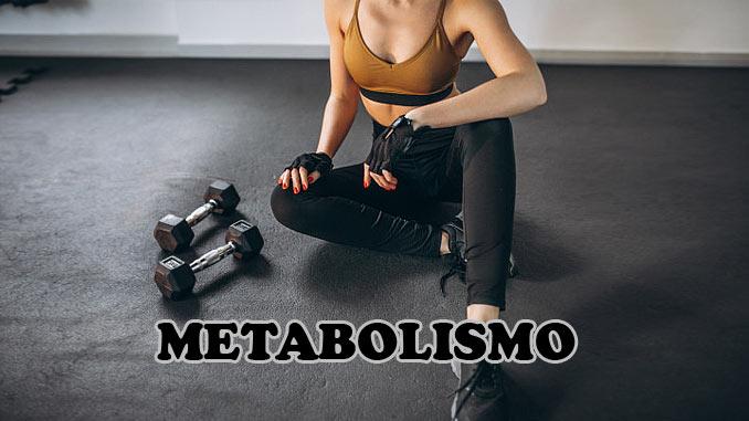 O que é metabolismo, o que faz e como afeta a sua saúde
